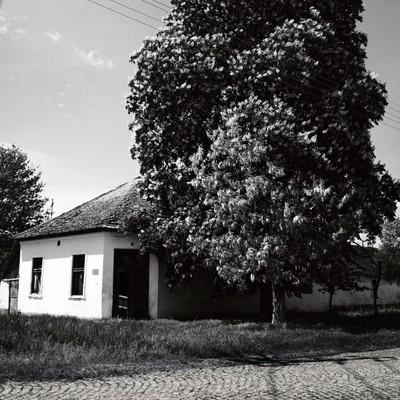 Foto 17763