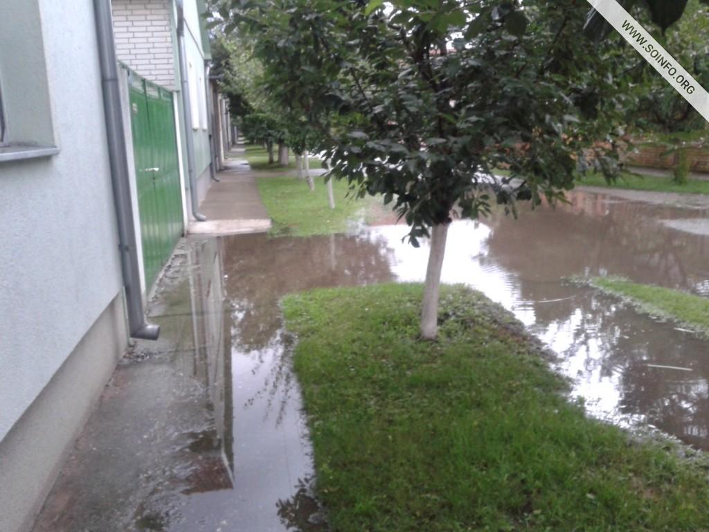 Kljajićevo posle kiše... - 5